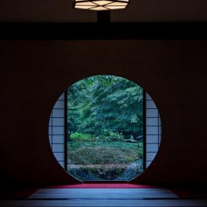 遠征ご飯とカメラ(雨の鎌倉 編)