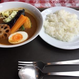 スープカレー(野菜)