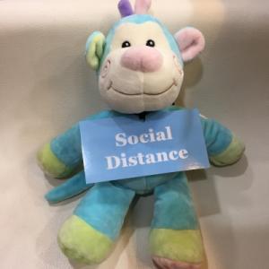 お猿さん(オフィスにて)