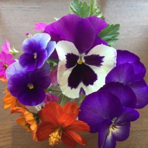 Flowers 💐