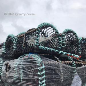 Mull島旅行2020 ④島の暮らしを垣間見る
