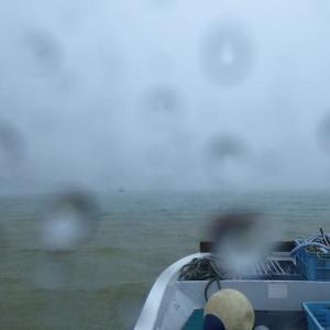 今日の石垣島はスッキリ晴れましたぁ(^^)