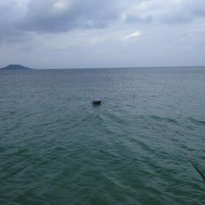 どん曇りの石垣島でありました・・・