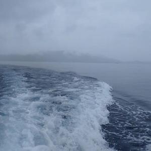 雨降る石垣島
