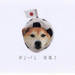 ガンバレ 日本!