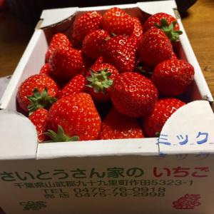 イチゴの話