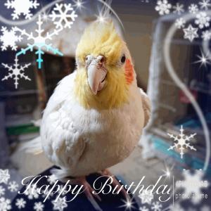 桃さんの誕生日