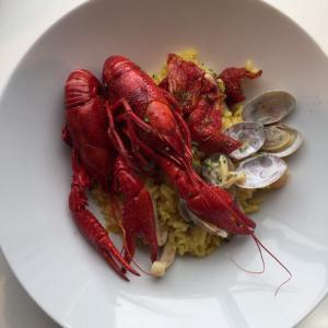 IKEAレストランで食べた物♪初めてのザリガニ料理(^^;他♪