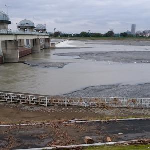 中野島ダム下の状態