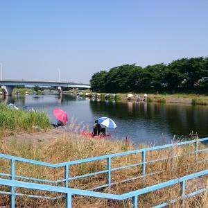 砂塚橋下流南岸、水門左側 No4
