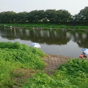 砂塚橋下流南岸、水門左側 No6