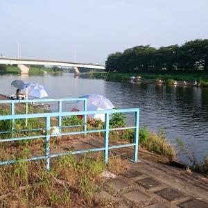 砂塚橋下流南岸、水門左側 No8