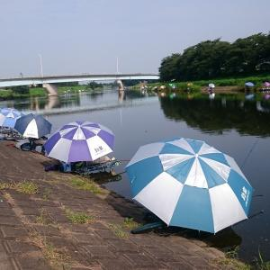 砂塚橋下流南岸、水門左側 No9