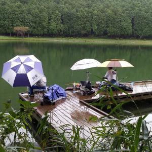 田貫湖釣行