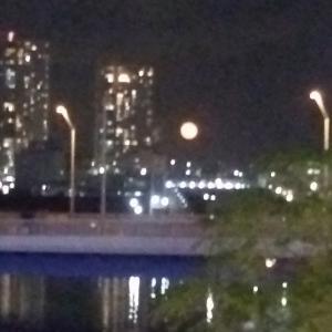師走の満月