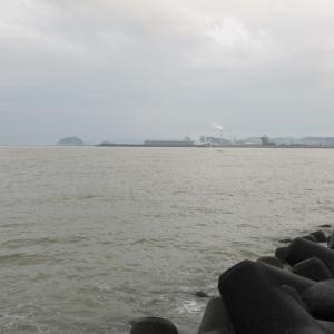 那賀川のタコが壊滅的