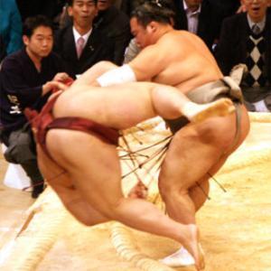 豊ノ島の相撲人生3
