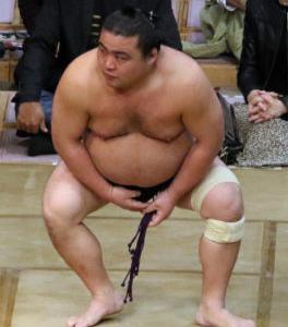 悲劇に包まれた相撲界
