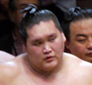 照ノ富士2015年の栄光2