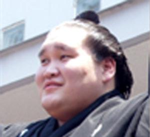 照ノ富士2015年の栄光3