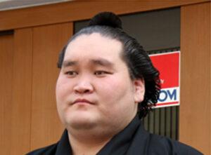 照ノ富士の横綱昇進を考察する