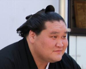 多様性が求められる大相撲