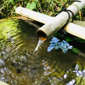 水が教えてくれる言霊