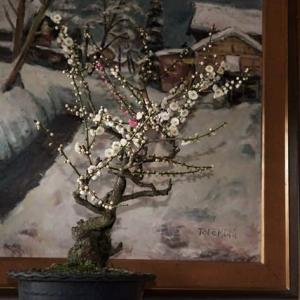 梅の木は残った・・