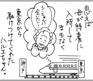 ハルエちゃん便り(3)