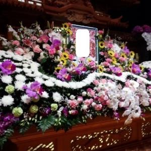 ★★ たくさんのお花に囲まれて ★★