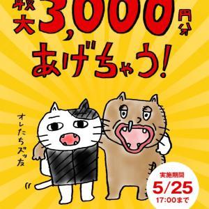 【ご招待します】zozoデビューで1000ptプレゼント☆☆