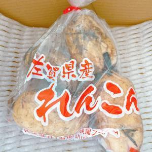 佐賀県産★泥付き朝採り奇跡のれんこんを使ったレシピ