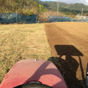 小麦の準備