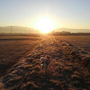 Cooと朝陽を観に。。。