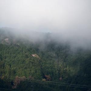 流れる雲につられてお散歩へ・・・
