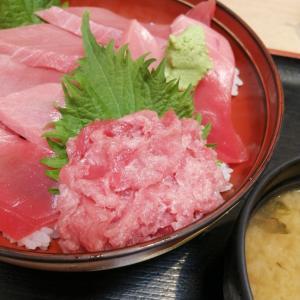 神奈川の三浦 三崎はマグロが絶品です