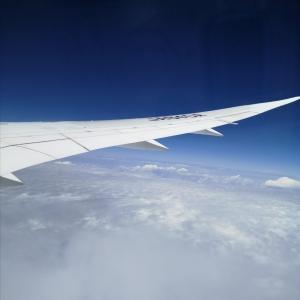 FLY To 沖縄