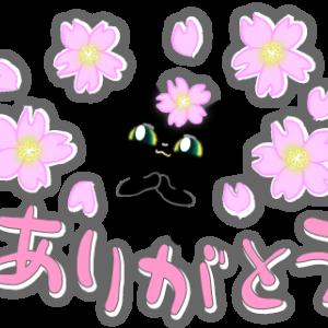 桜は草花って言うかニャ&六花亭「大平原」もおいしいよ。