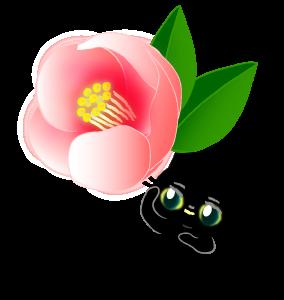 ハナショウブはニャア&ジャンボシューの新種だ?