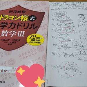 数学ドリル 子どもらしさ ホームスクールとは