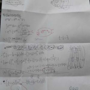 遺伝 エビングハウス 数学 半年 ギフテッド告知 少数派