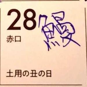 カレンダーに鰻 ハグロトンボ 赤い羽根 ギフテッド教育