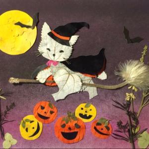 押し花作品 「ハロウィンのネコちゃん」