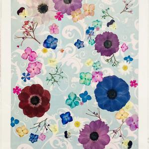 押し花作品 「花びらコラージュ」