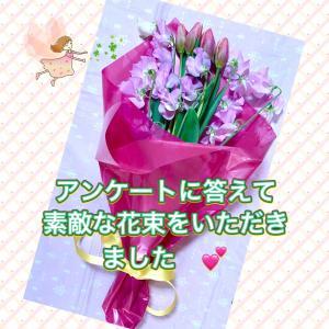 アンケートに答えて、花束をいただいちゃいました(*゚∀゚*)