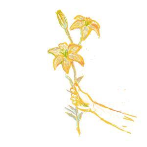 9月18日生まれの誕生花 花言葉