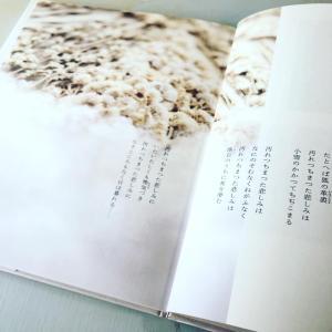 中原中也 よごれちまった悲しみに 花と言葉の詩画集より ポプラ社刊