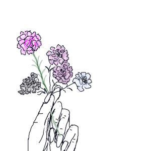 10月15日の誕生花 イベリス