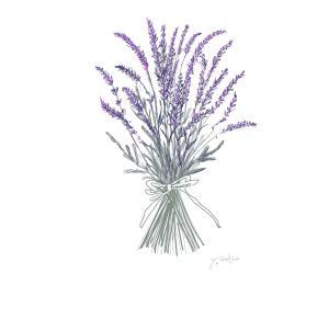 6月19日の誕生花イングリッシュラベンダ― 花言葉 香りとともに忘れません