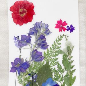 【複製】押し花セラピ―例  思いのままにご制作された「真夏の避暑地」より